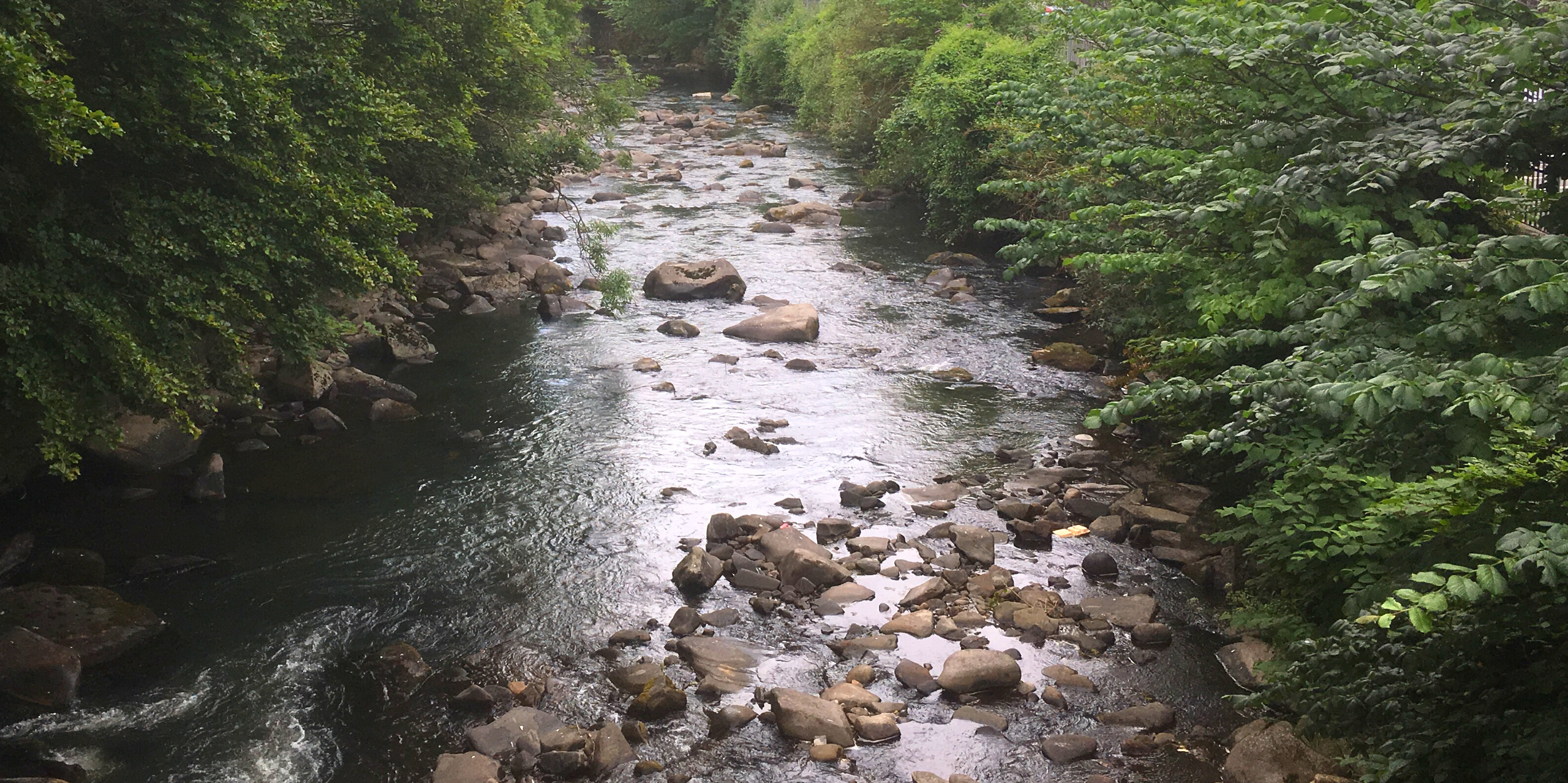 The River Cynon in South Wales. Photo: South East Wales Rivers Trust.