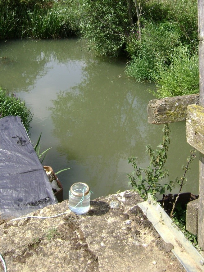 Murky water in the River Evenlode in 2016