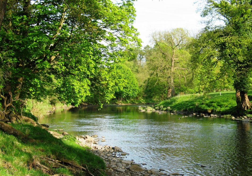 The River Ribble 01