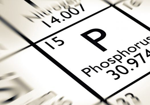 phosphorus-in-soil-685x368